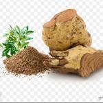 サラシアの根と粉末とコップ