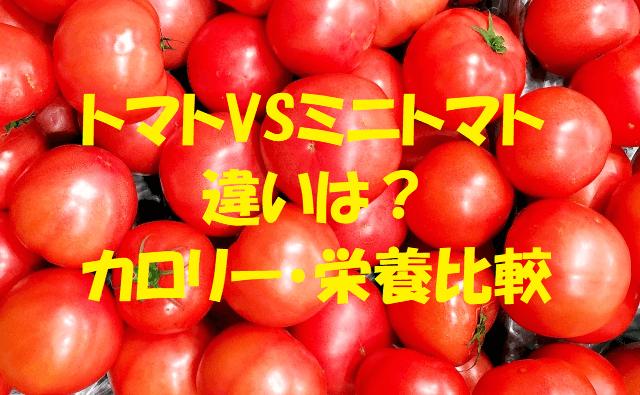 トマトとミニトマト_s (1)